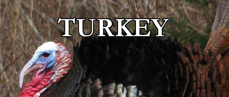 turkey-choke-tubes